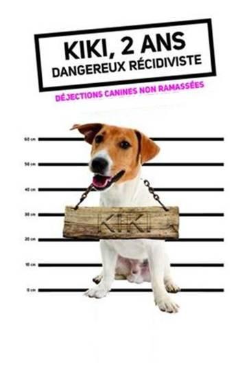Nuisances li es aux d jections canines commune de chatte - Loi sur nuisances sonore par aboiement de chiens ...
